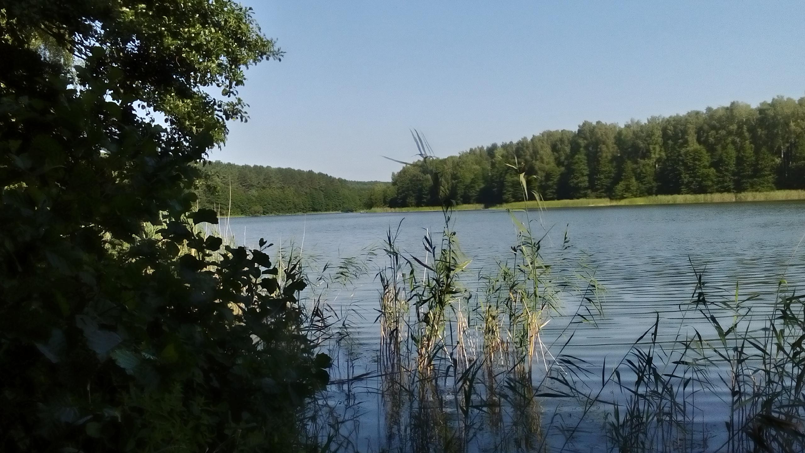jezioro krzywe zatoka miła