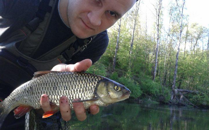 ryba w dłoni