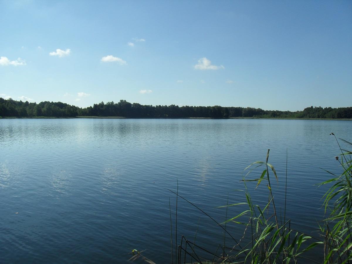 łowisko Wersminia