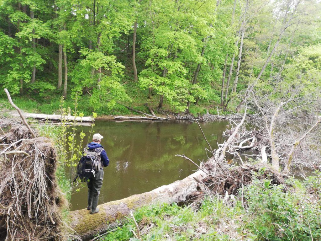wędkarstwo wędkarz rzeka zwałka