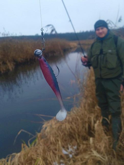 wpływ niskiej temperatury na żerowanie ryb