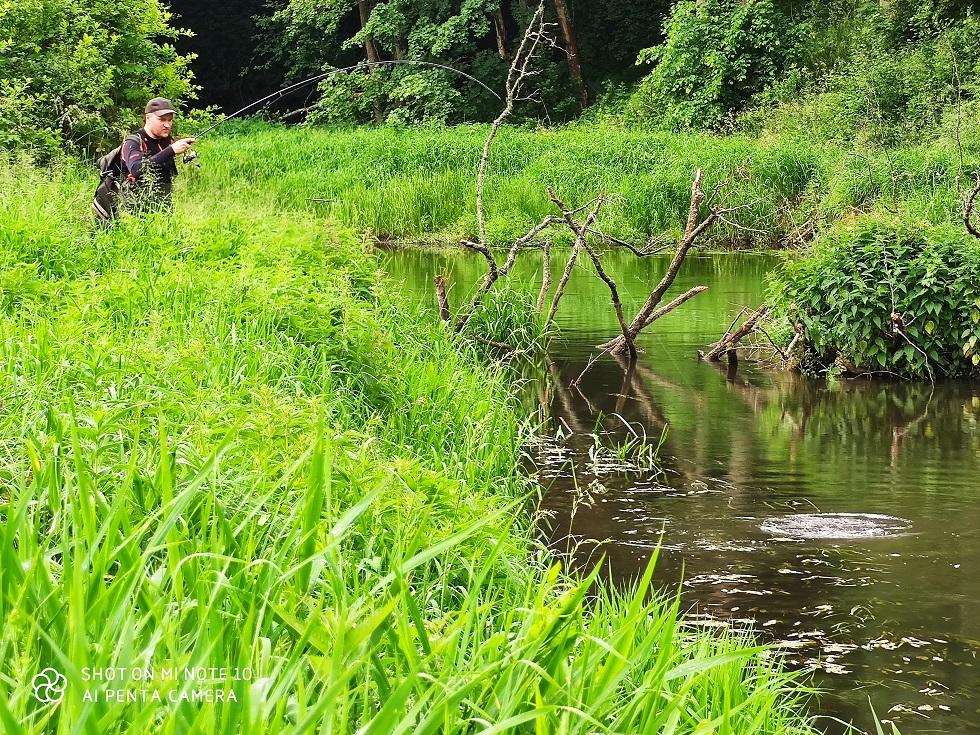 rzeka pstrągowa rzeka kleniowa łowienie pstrągów i łowienie kleni