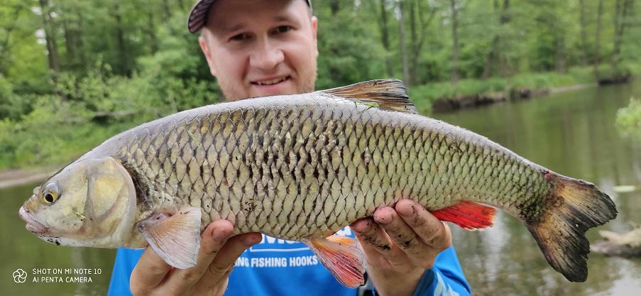jak łowić duże ryby ?